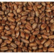 Carawheat slad (Weyermann)