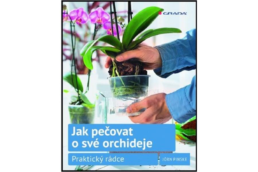 Jak pečovat o své orchideje obrázek
