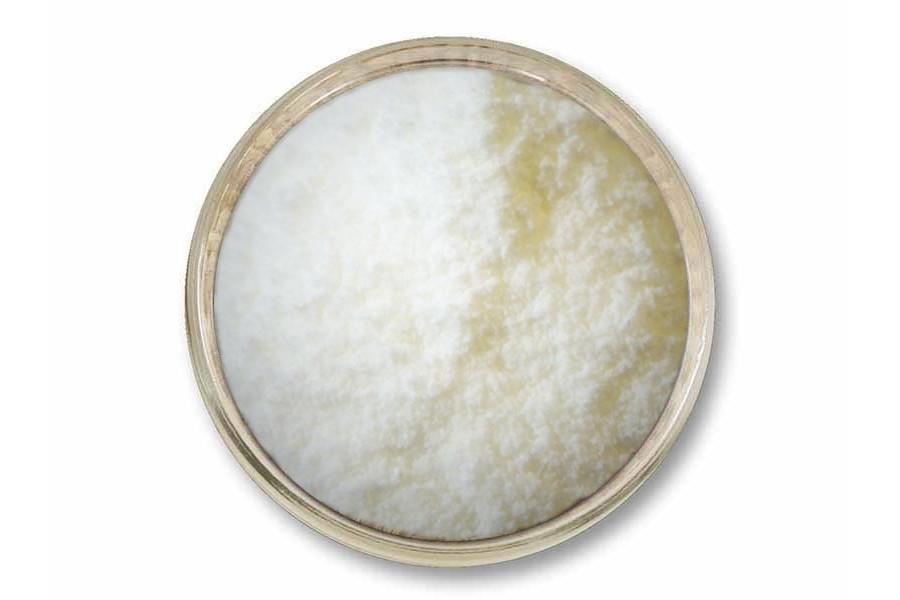 Laktóza (1 kg) obrázek