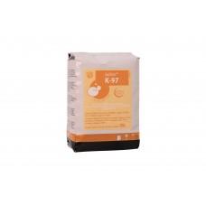 SafAle K-97 (Fermentis)