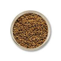 Pšeničný slad světlý (Viking)